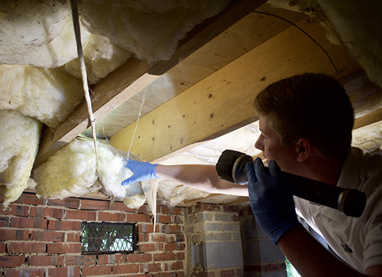 Performing thorough FREE crawl space inspections